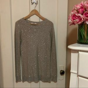BB Dakota sparkle sweater